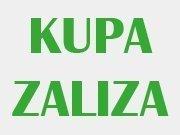 Kupa Zaliza
