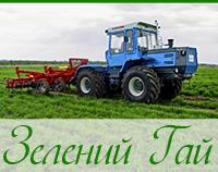 Зеленый Гай (Васильевка)