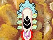 Жатва «Житомир»