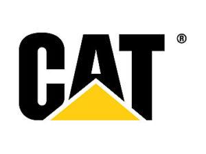 caterpillar-cat